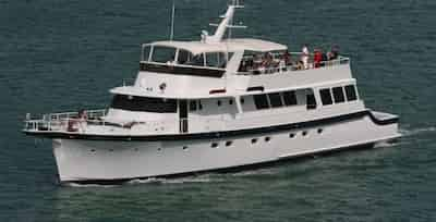 Custom Boat for Parties in Fort Lauderdale