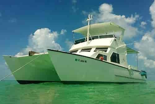 Motorboat Key West